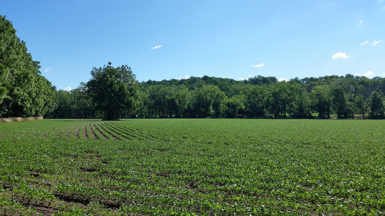 Monroe County Soil and Water Conservation District